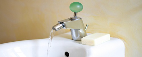 Bidet Installation in San Jose bathroom remodel